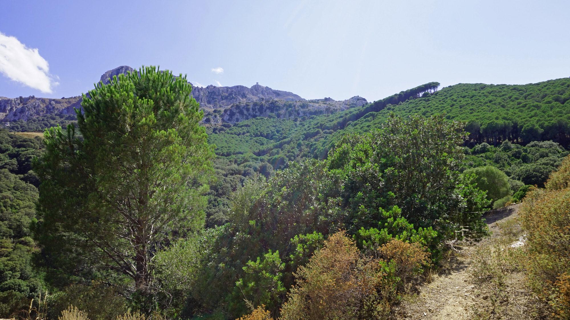Wildes, bergiges Hinterland