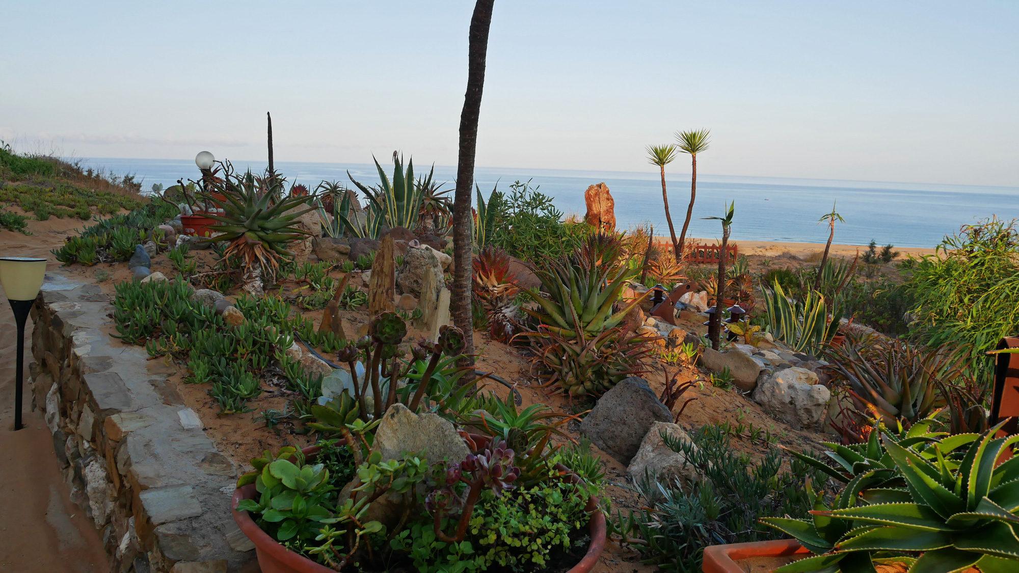 Kaktusgarten am Hotel